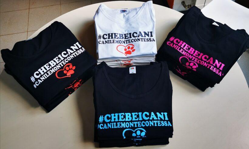 #chebeicani