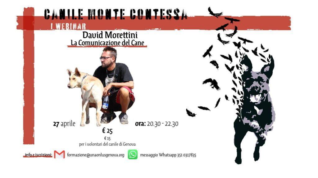 La Comunicazione del Cane - David Morettini 1